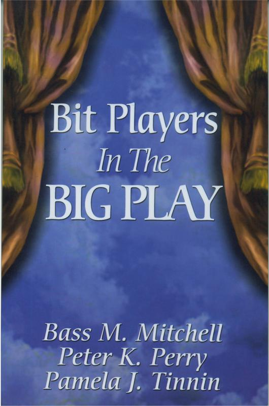 Bit Player cover